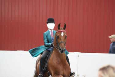 Saddlebred Saddleseat Stock 5 by CrowsNestPhotography