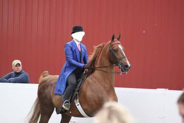 Saddlebred Saddleseat Stock 6 by CrowsNestPhotography