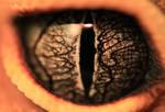 Dragon eye by likos