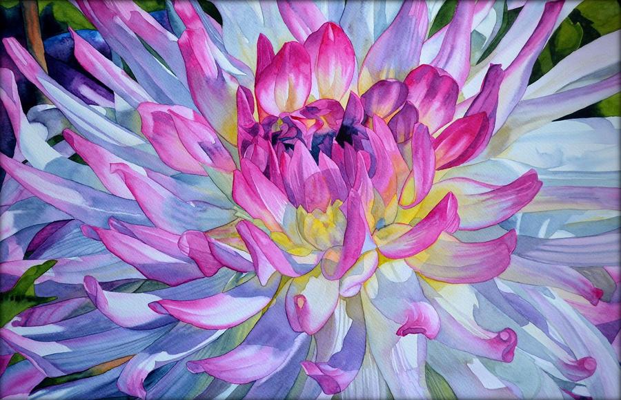 Chrysanthemum by Shelter85