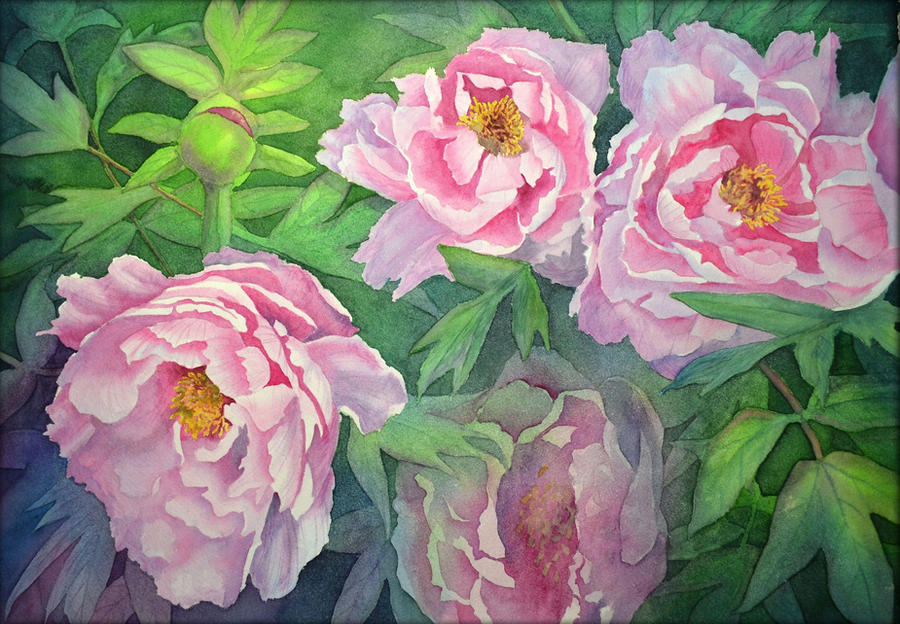 Peonies by Shelter85
