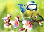 Spring Twittering