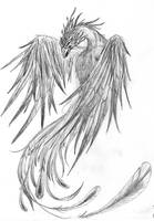 Pheonix Sketch