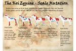 Koi Equines - Scales Mutations