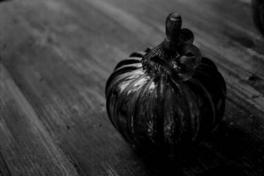 pumpkin by Montaurus