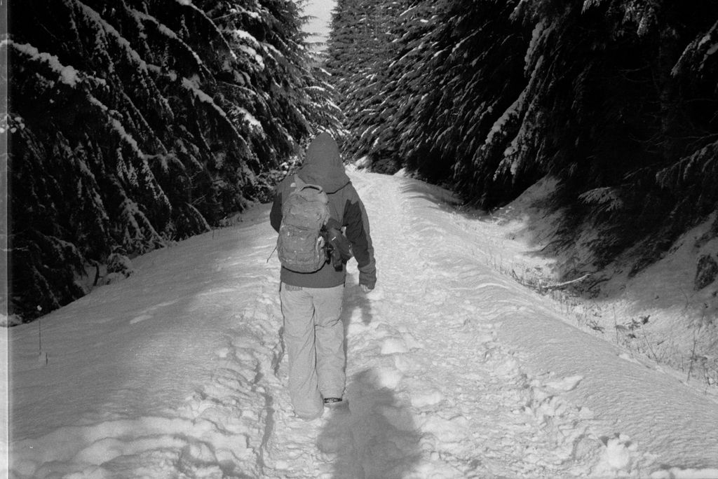 Walk by Montaurus
