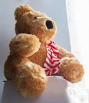 Christmas Present. Teddy Bear