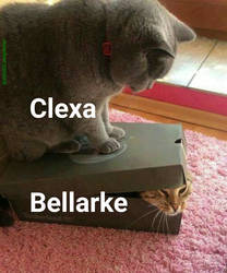 Clexa by IdealCompleter