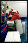 fish market by enjoyamau