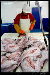 fish market2 by enjoyamau