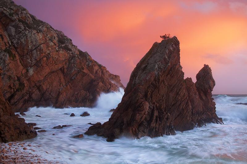 Evening Glory by PauloALopes