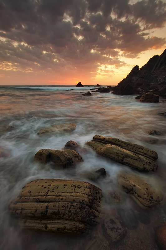 Burning Wild by PauloALopes