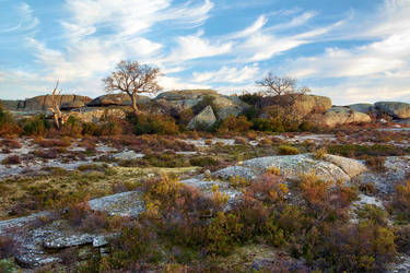 Spring Plateau by PauloALopes