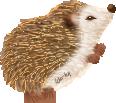 Hedgehog of Celia - Annietsim OC by ShillMynara