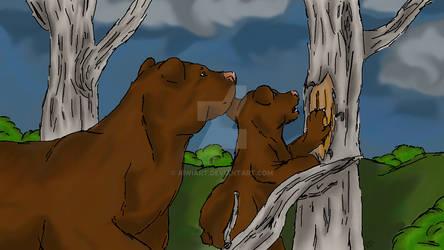 Bears (Photoshop Drawing Wacom)