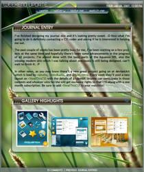 2007 Journal CSS