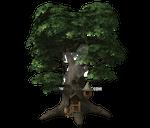 Fae / fairy /elven Tree House