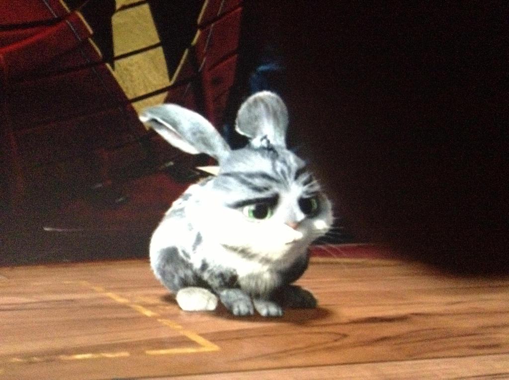 Little Bunnymund by RiseJackFrost