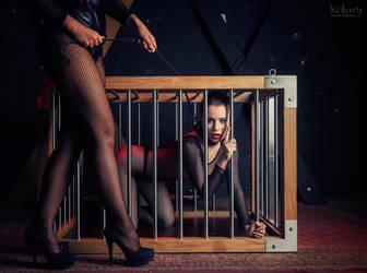 RedDiamonds.pl BDSM Luxury Furniture 01 by kobaru
