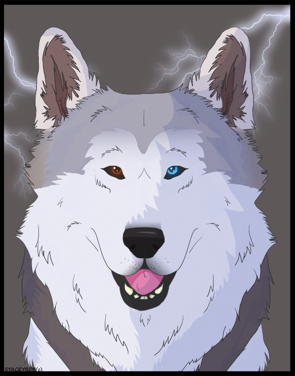 storm_2_commission_by_staceybob-d479dcv.png