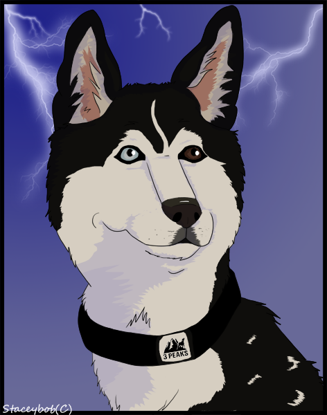 another_storm_commission_by_staceybob-d48n9xc.png