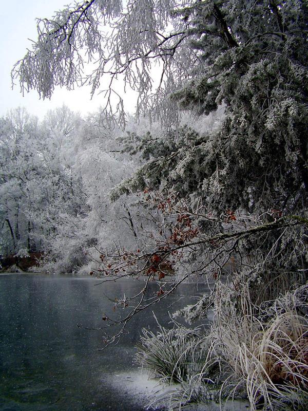 Frozen by goudlokje