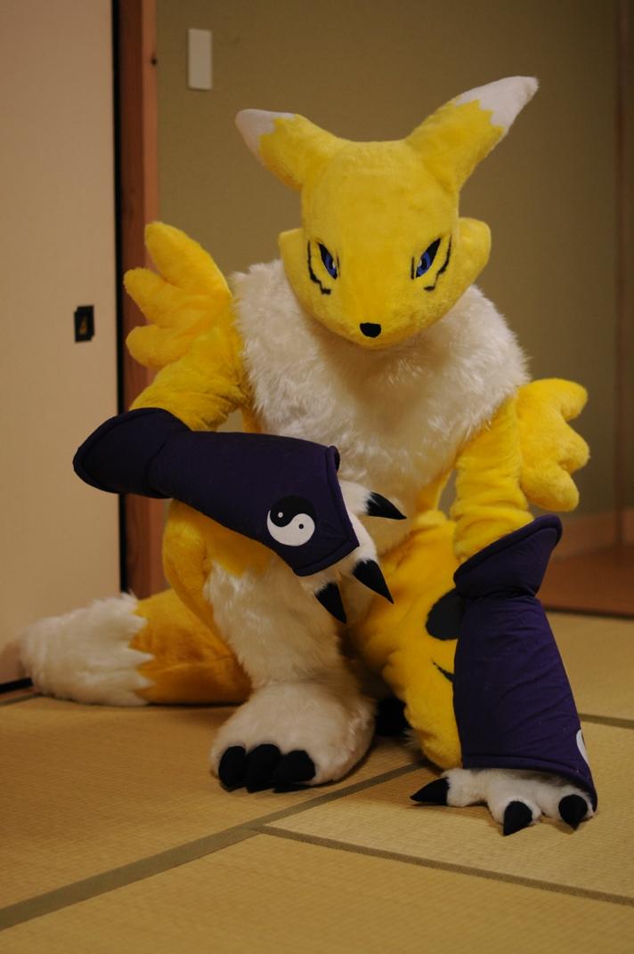 Renamon photo2 by ajisai-rebellion