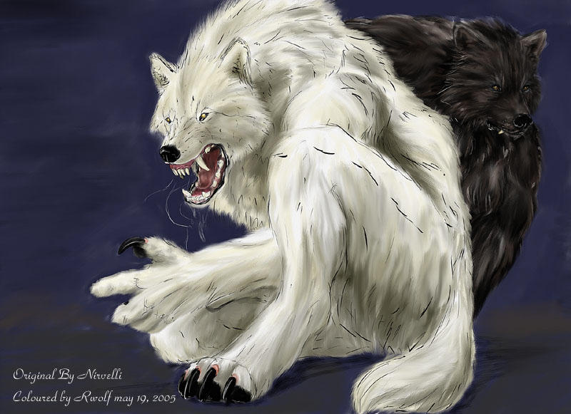 White Wolf And Black Wolf In Love White Wolf Black Love ...
