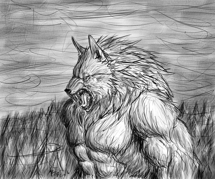 Snarl by rwolf
