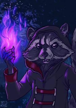 Magic Racoon