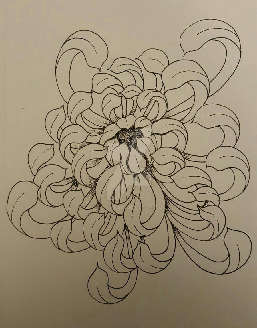 Traditional Flower Line Drawing : Chrysanthemum flower by kaylababe on deviantart