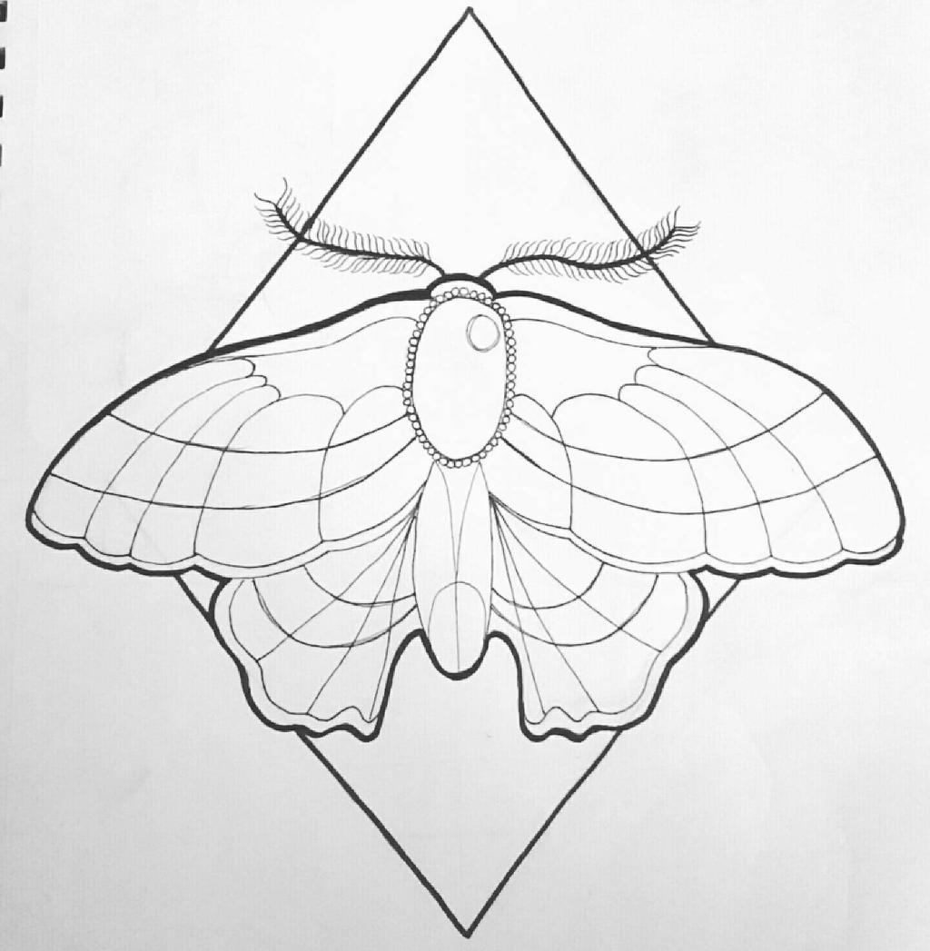 Neo Traditional Moth By Kaylababe75 On DeviantArt