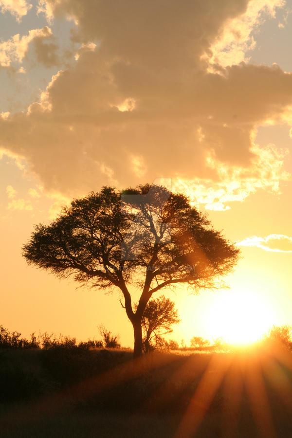 Van Zylsrus Sunset 2 by cfoto