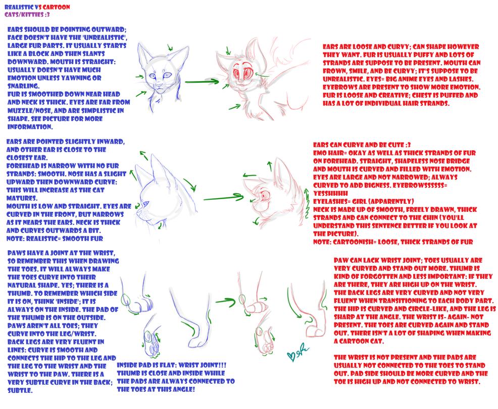 Realistic vs cartoon cats tutorial by xepicgamequestsx on deviantart realistic vs cartoon cats tutorial by xepicgamequestsx baditri Choice Image