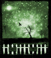 The Raven by missmorgue