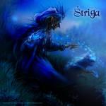Shtriga, shapeshifting witch