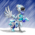 winter protection by how2101