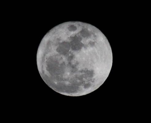 Moon Stock I