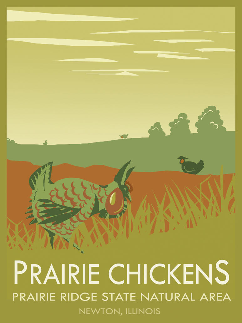 Prairie Chicken Poster by orinocou