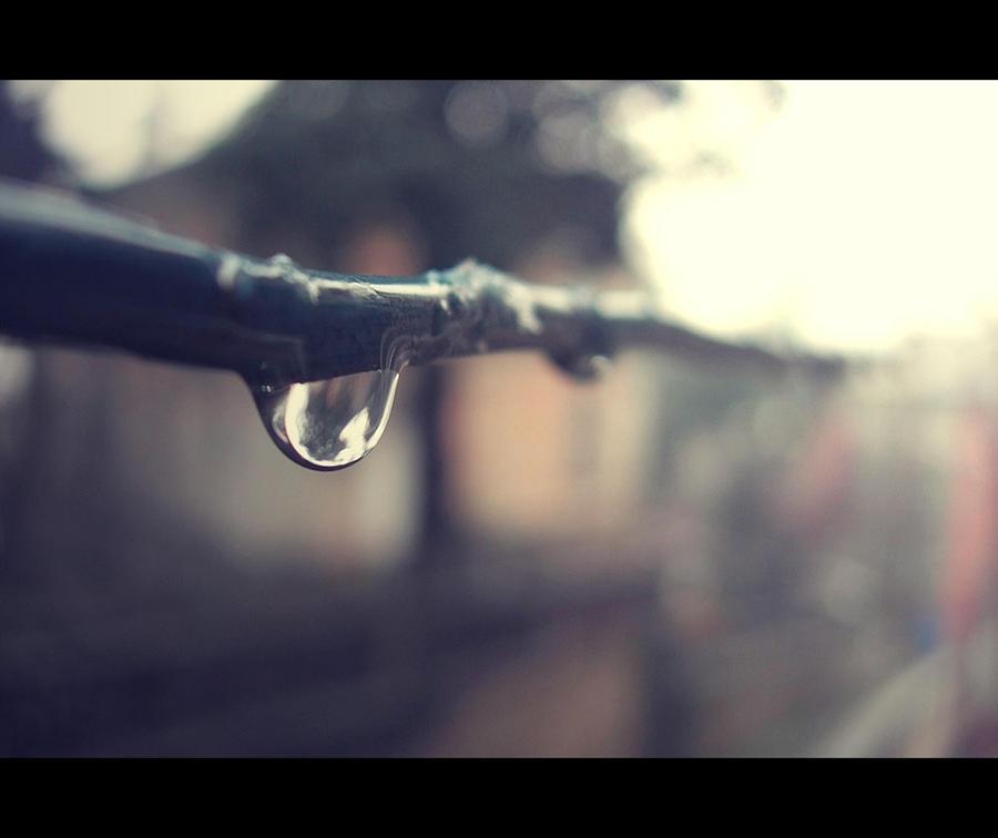 winter rain by birazhayalci