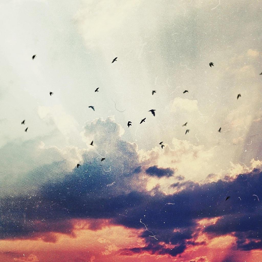 little dreams by birazhayalci