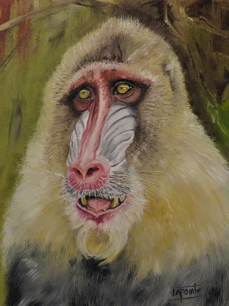 Mandrill by Shaytan666