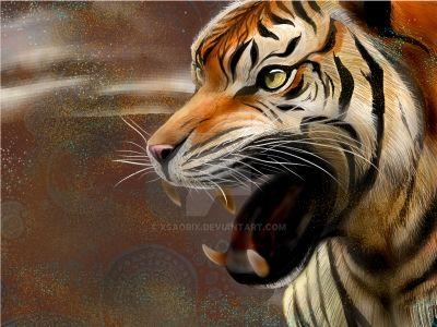 Tiger by XsaoriX