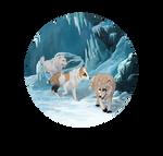Ice Cave Venture 3