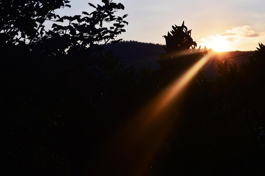 Sunset. by Heavensinyoureyes