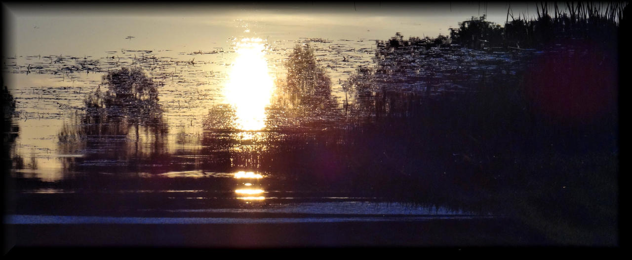 Sunscape... by Yancis