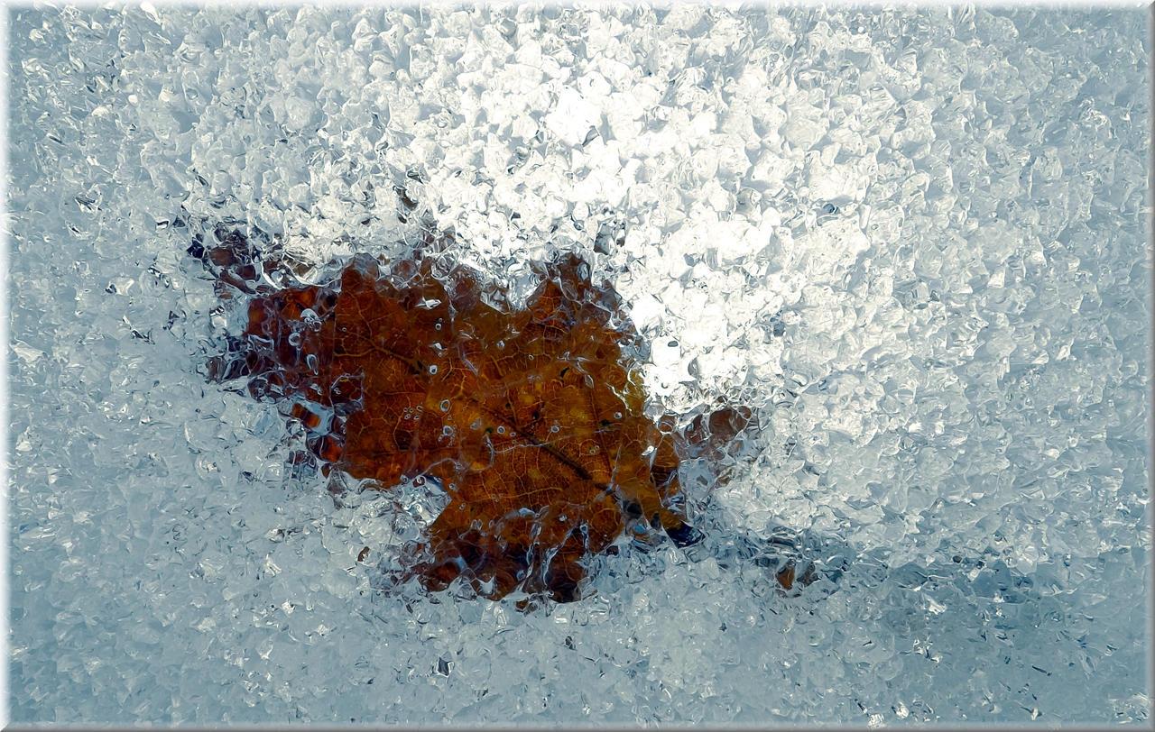 Frozen... by Yancis