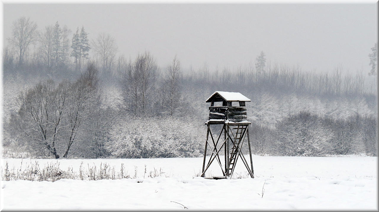 Shooting hut... by Yancis