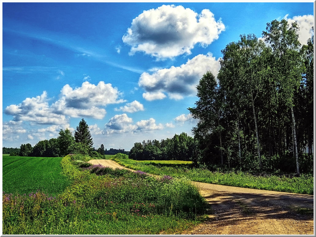 A landscape from latvia by yancis on deviantart for On landscape