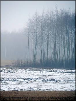 Farewell winter...